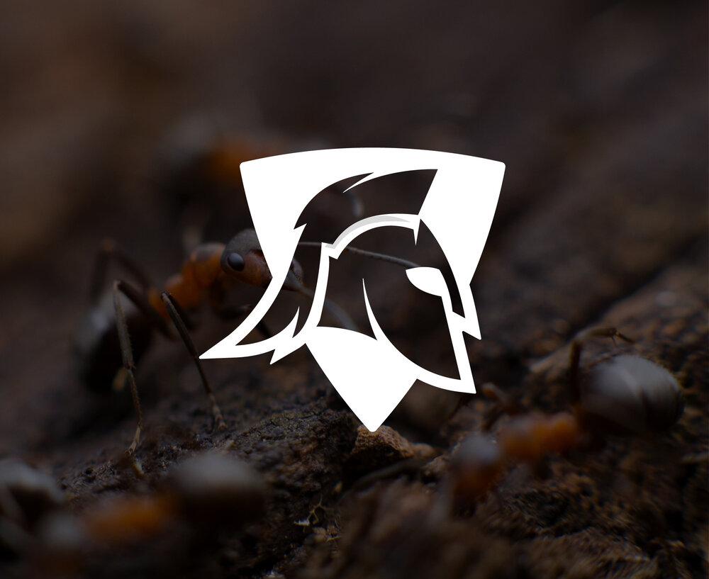 spartan-Logo-Single-hero-image